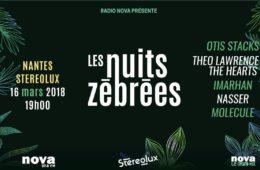 Nuit Zébrée Nantes